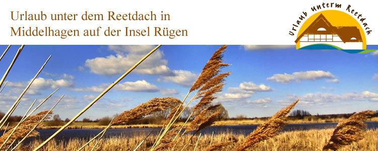 Rohrhus Rügen GmbH